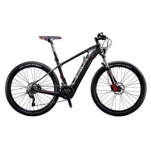 RACE-STAR Carbbon E-MTB Knight 9